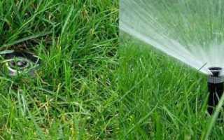 Приспособления для полива огорода своими руками