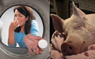 Почему пахнет из стиральной машины