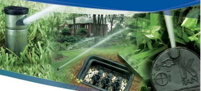 Автоматическая система полива для дачи